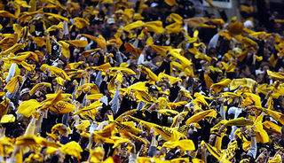 Terrible towel crowd3